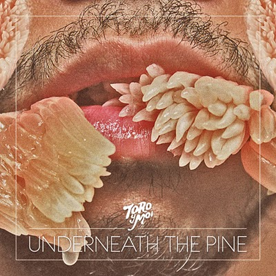 Toro y Moi-underneath the pine