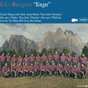 C + C Maxingross-Singar