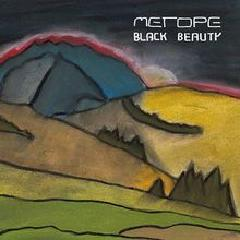 Metope-Black beauty