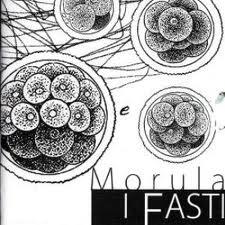 I Fasti-Morula
