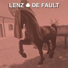 Lenz – De Fault 5 - fanzine