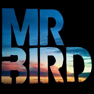 Mr Bird - Bird Bird Bird 1 - fanzine