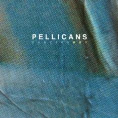 Pellicans - Dancing Boy 12 - fanzine