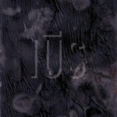 Enrico Ruggeri – IUS 1 - fanzine