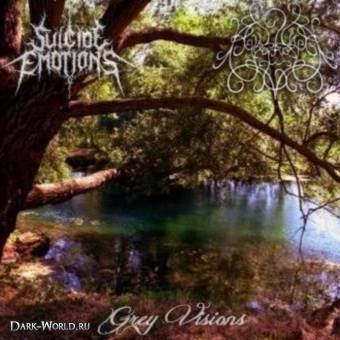 Suicide Emotions Agoraphobia – Grey Visions 10 - fanzine