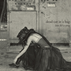Dead Cat In A Bag – Late For A Song 1 - fanzine