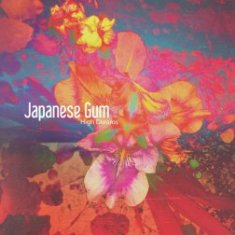Japanese Gum – High Dreams 11 - fanzine