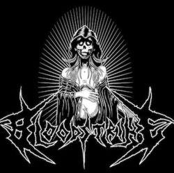 Bloodstrike - Necrobirth 1 - fanzine