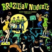 VV.AA. - Brazilian Nuggets - Back From The Jungle Volume 3 1 - fanzine