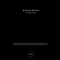 Developer - In Pure Form 2 - fanzine