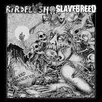 Birdflesh / Slavebreed - Nekroacropolis 7 - fanzine