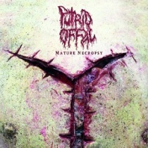Putrid Offal - Mature Necropsy 10 - fanzine
