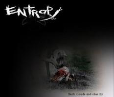 Entropy-OAC-300x270