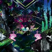 Pryapisme – Futurologie 1 - fanzine