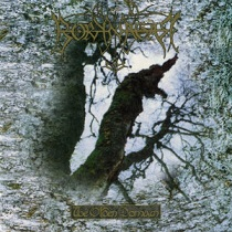 Borknagar – The Olden Domain (Reissue) 10 - fanzine