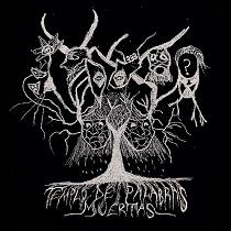 ChaosWolf - Templo de Palabras Muertas 9 - fanzine