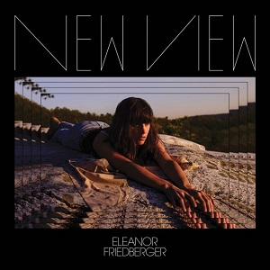Eleanor Friedberger - New View 1 - fanzine