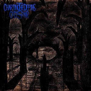 Charting the Depths of Despair – Demo 2016 6 - fanzine