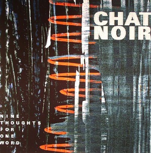 Chat Noir - Nine Thoughts For One Word 1 Iyezine.com