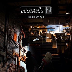 Mesh – Looking Skyward 8 - fanzine