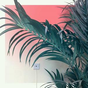 Sonambient - Slow Light 1 - fanzine